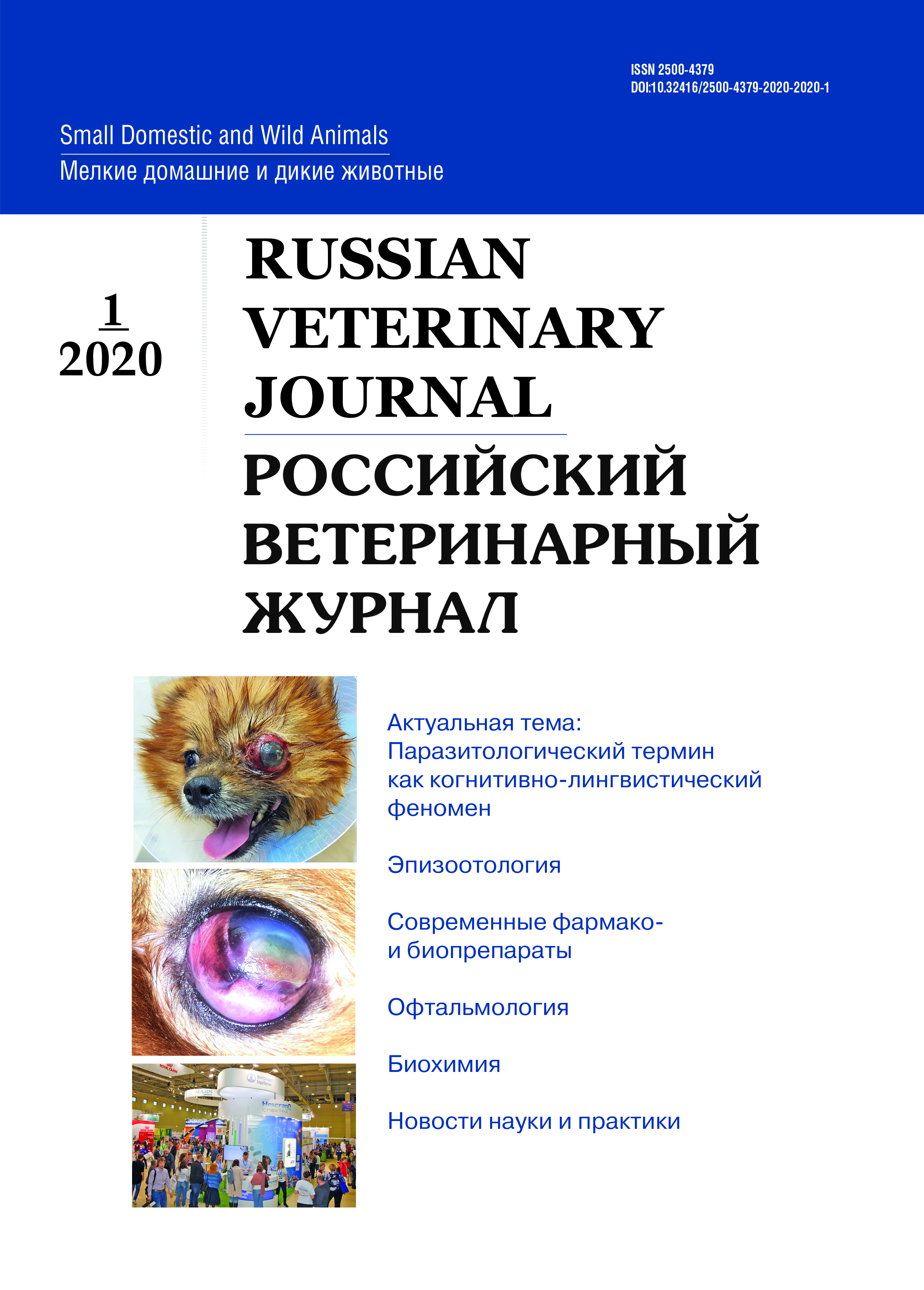 Prevalence of causative agents of respiratory infections in cats and dogs in Russia